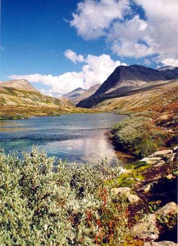 Zdj�cia: Rondane, Park Narodowy Rondane, NORWEGIA