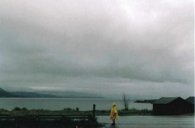 Zdjęcia: w drodze, norwegia północna, ku lofotom, NORWEGIA