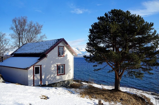 Zdjęcia: Oldervik, Troms, Nad fiordem, NORWEGIA