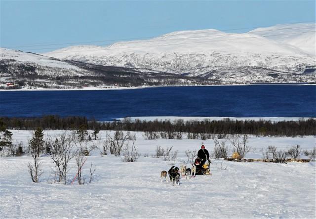 Zdjęcia: Kvaløya, Troms, Zaprzęg, NORWEGIA