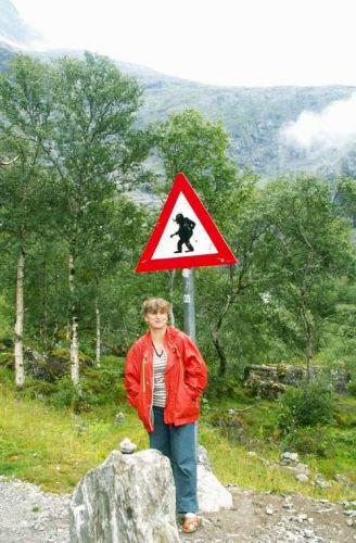 Zdj�cia: Droga nr 63, Uwaga na Trolle, NORWEGIA