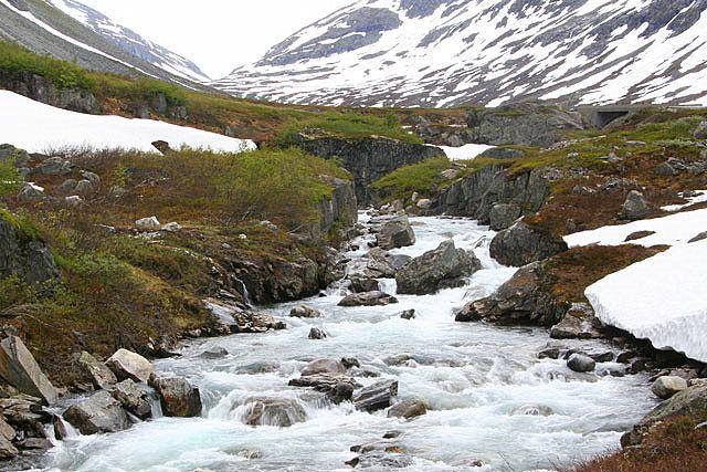 Zdjęcia: Okolice Sognefjord, VIII, NORWEGIA