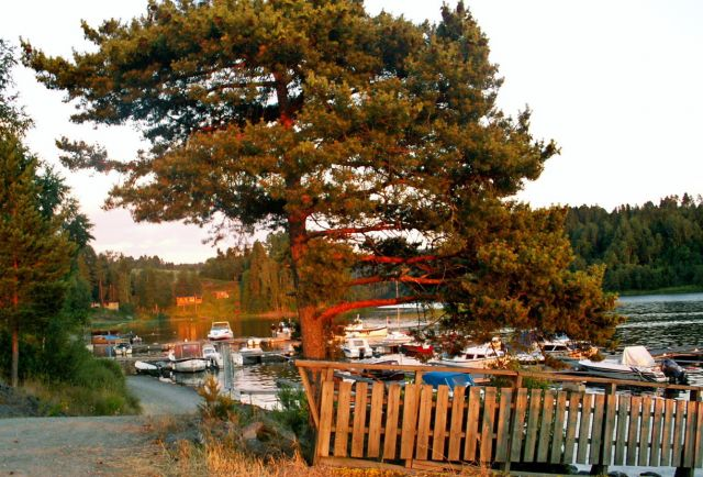 Zdjęcia: Gansvika, Skandynawia, Jezioro Qyren 04, NORWEGIA