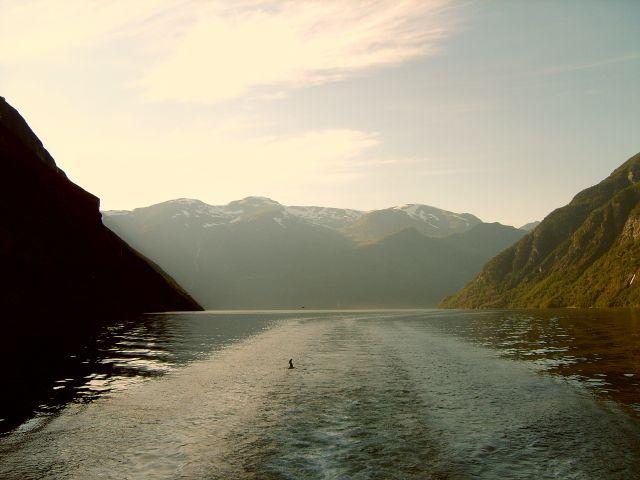 Zdjęcia: Geirangerfjord, Geirangerfjord5, NORWEGIA