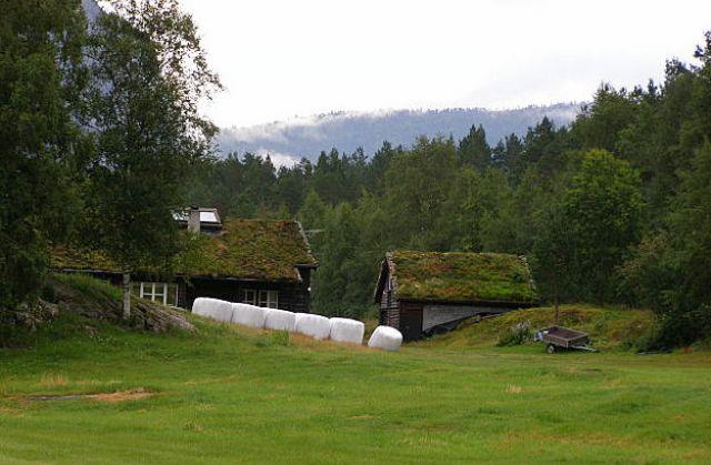 Zdjęcia: W drodze do Lysefjorden, Południowe wybrzeże, Domki Troli? , NORWEGIA
