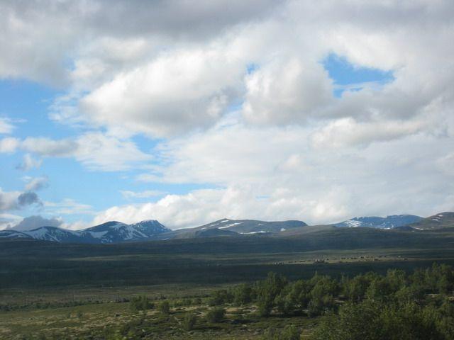 Zdjęcia: miedzy berg. a trondheim, hytty w oddali, NORWEGIA