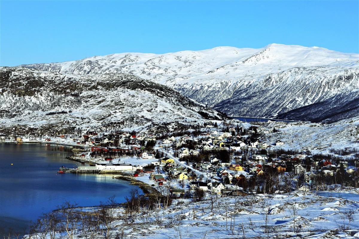Zdjęcia: Ersfjordbotn, Troms, Na zboczu, NORWEGIA