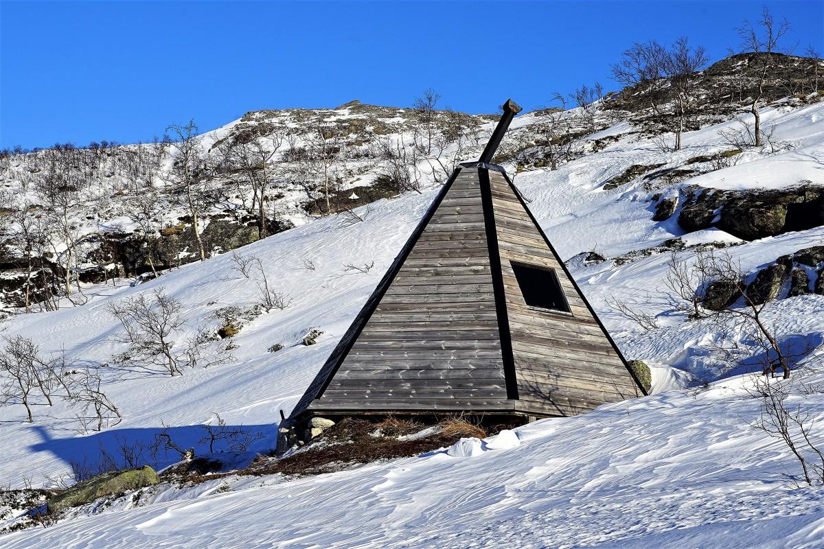 Zdjęcia: Ersfjordbotn, Troms, Miejscówka z wypasem, NORWEGIA