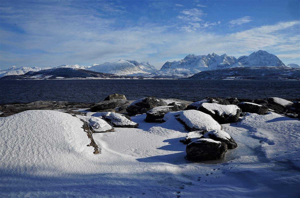 Zdjęcia: Oldervik , Troms, Ślady, NORWEGIA