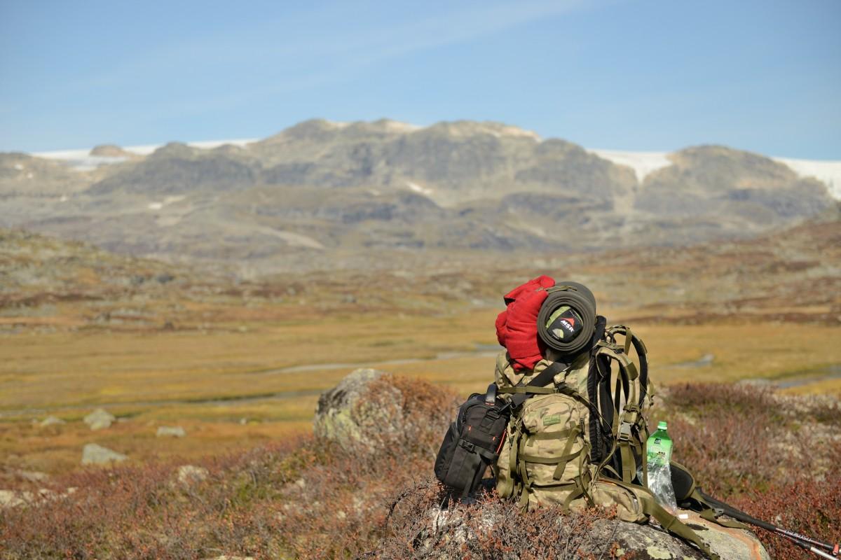 Zdjęcia: rejon lodowca, Finse, W drodze, NORWEGIA