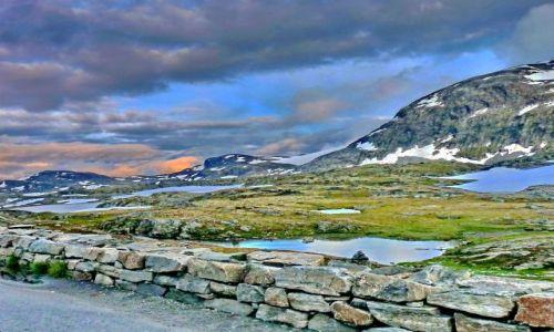 NORWEGIA / Hordaland / Hordaland / Droga przez wyżyny Norwegii