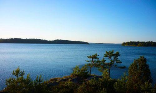 NORWEGIA / Oslo / Rygge / Typowy krajobraz okolic Oslo