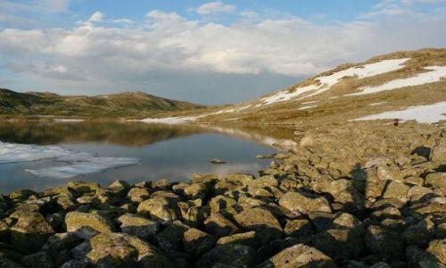 Zdjecie NORWEGIA / płaskowyż Hardangervidda / płaskowyż Hardangervidda / bezkres