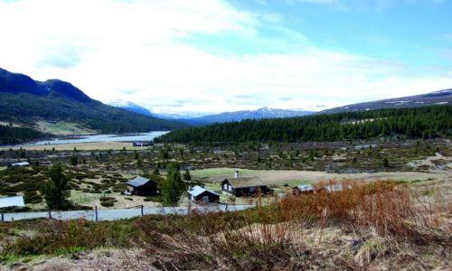Zdjecie NORWEGIA / Płaskowyż / Gdzieś w cudownej Norwegii  / I jak tu nie kochać Norwegii