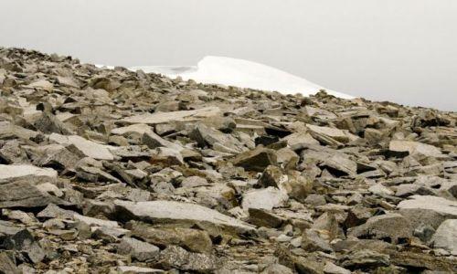 NORWEGIA / - / Glittertind / Kammienne pola pod szczytem i śnieżna grań Glittertind.
