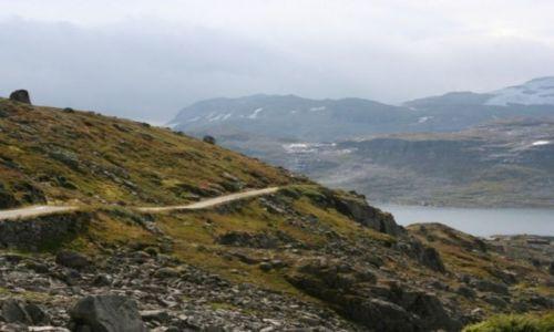 Zdjecie NORWEGIA / Sogn og Fjordane / Rallarvegen / Rallarvegen
