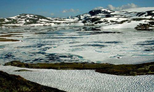 Zdjęcie NORWEGIA / - / Norwegia / Okolica Galdhopiggen