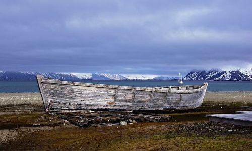 Zdjecie NORWEGIA / Svalbard / Calypsobyen / Zakotwiczyć tu można...