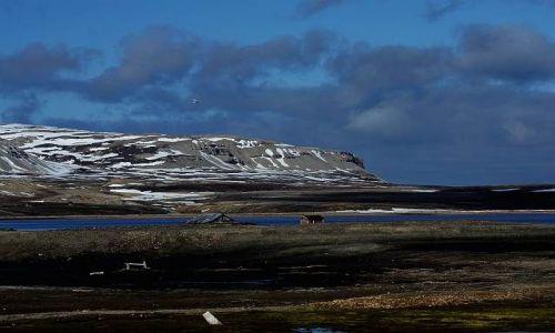 Zdjecie NORWEGIA / Spitsbergen / Ny Alesund / Zatoka
