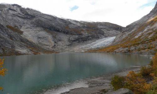 Zdjecie NORWEGIA / -Sogn og fjordane / Gaupne / Nigardsbreen