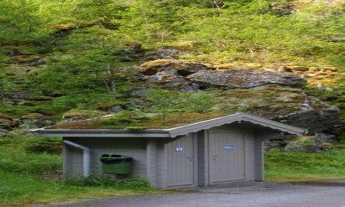 NORWEGIA / południe Norwegii / gdzieś po drodze / trawa na toalecie