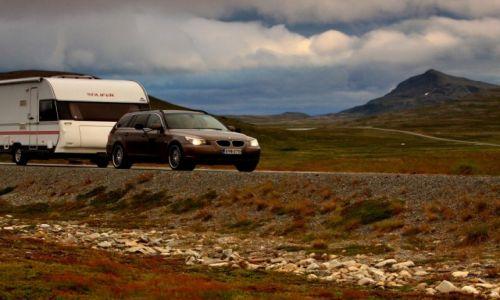 Zdjęcie NORWEGIA / płn-wsch Norwegia / w drodze / Wielka miłość Skandynawów....:)