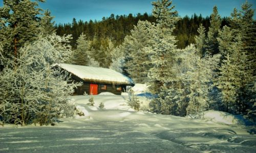 Zdjęcie NORWEGIA / Buskerud / Hemsedal / zima