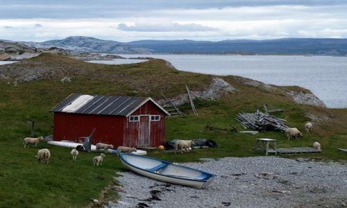 Zdjecie NORWEGIA / Finnmark / Trollholmsund / łódka