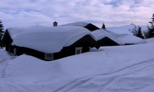 Zdjecie NORWEGIA / Hedmark / Trysil / zima