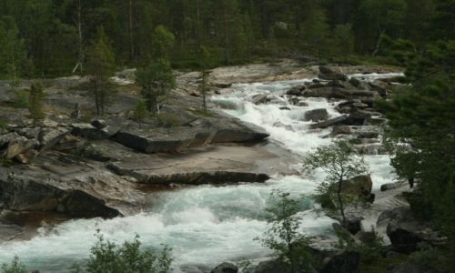 Zdjecie NORWEGIA / środkowa Norwegia / środkowa Norwegia / Dzika rzeka