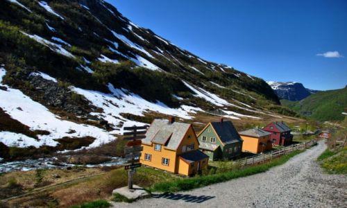 Zdjęcie NORWEGIA / -Buskerud / Myrdal / Myrdal
