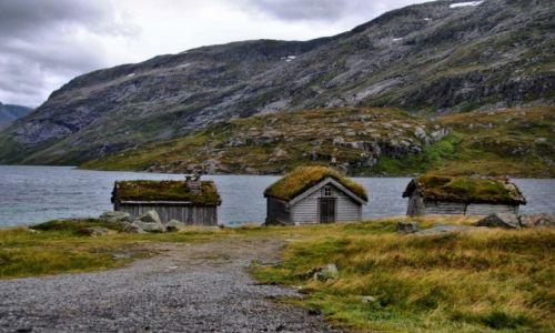 Zdjecie NORWEGIA / Sogn og Fjordane / Gaularfjellet / NORWAY