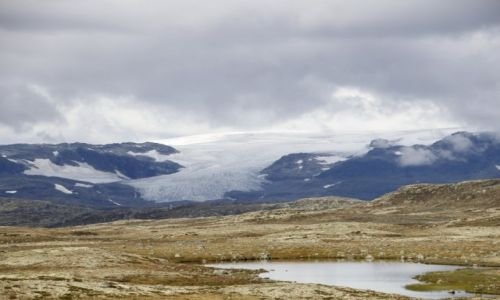 Zdjęcie NORWEGIA / Hordaland / Hardangervidda  / Lodowiec Hardangerjøkulen