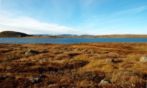 Zdjęcie NORWEGIA / Hardanger / Hardangervidda / Hardangervidda