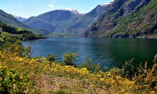 Zdjęcie NORWEGIA / Sogn og Fjordane / Aurland / NORWAY-KONKURS