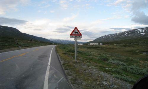 NORWEGIA / Geiranger / Geiranger / Norwegia-motocyklem