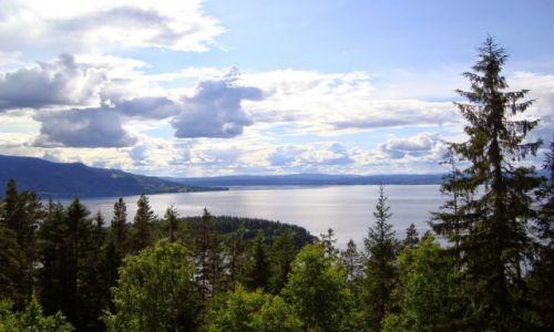 Zdjęcie NORWEGIA / Buskerud / Hønefoss / Norweskie krajobrazy