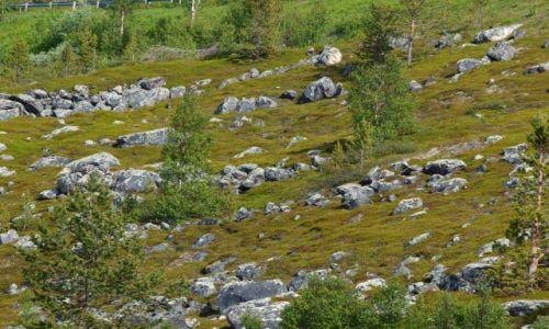 Zdjęcie NORWEGIA / Laponia / Alta / Alta ujęcie 2