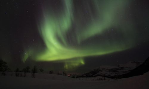 Zdjecie NORWEGIA / Arktyka / Kvaloya / Konkurs