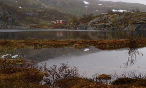 Zdjęcie NORWEGIA / Laponia / okolice Narviku / okolice Narviku