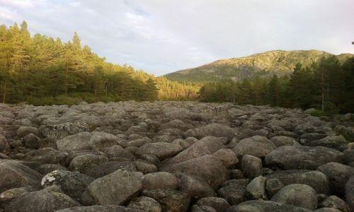 Zdjecie NORWEGIA / Rogaland / okolice Stavanger / kamienna rzeka
