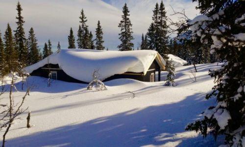 Zdjęcie NORWEGIA / Hedmark / Trysil / ZIMA