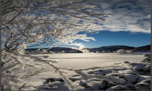 Zdjecie NORWEGIA / Hordaland / Gullbotn / Zimowy mróz