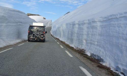 Zdjecie NORWEGIA / Rogaland / W drodze na Kjerag / to już czerwiec:)