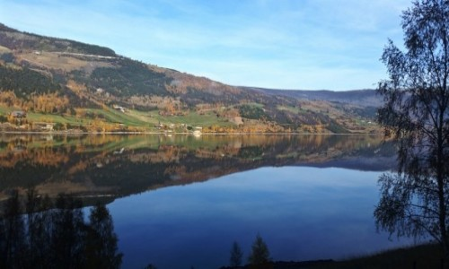 Zdjecie NORWEGIA / Sogn og Fjordane / po drodze... / po drodze...