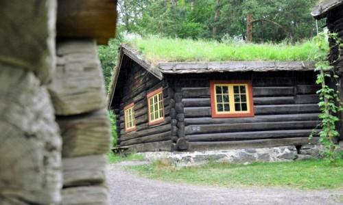 Zdjecie NORWEGIA / Oslo / Oslo / Wspomnienie po