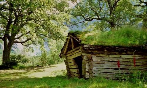 Zdjecie NORWEGIA /  Park Narodowy Jostedalsbreen / okolice lodowca Briksdalsbreen / Zielona chatka