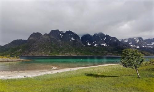 Zdjecie NORWEGIA / Nordland / Lofoty / wiosna...