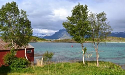 Zdjecie NORWEGIA / Nordland / Digermulen / wiosna...