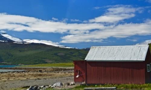 Zdjecie NORWEGIA / Nordland / Lofoty / Po drodze...